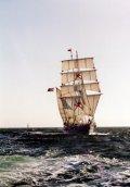 Shabab Oman, Volker Gries, Hanse Sail 1996 / Cutty Sark 1996 , 08/1996