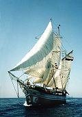 Florette, Ron Haynes, Mittelmeer / Mediterranean , 2001
